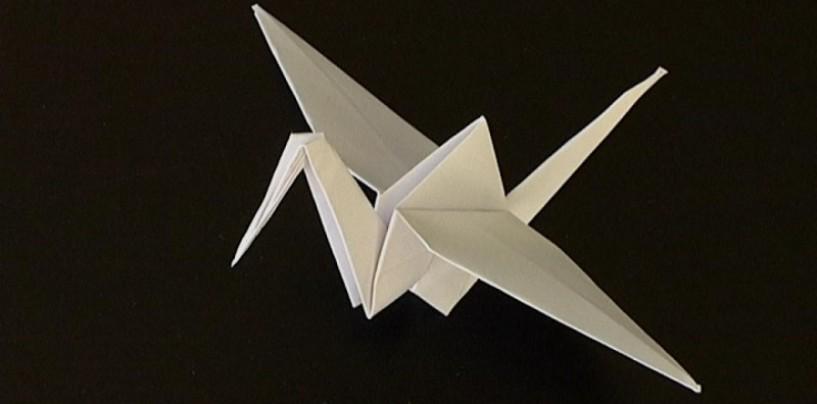 5000 de origami pentru Capitala Europeană a Tineretului – Cluj 2015