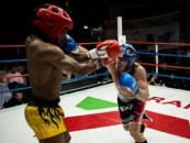 Show total de kickboxing la Cluj