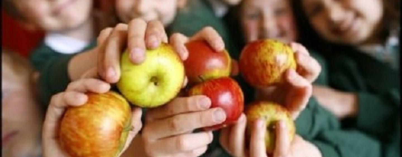 Școlile pot câștiga premii de până la 256.000 de lei de la Consiliul Județean