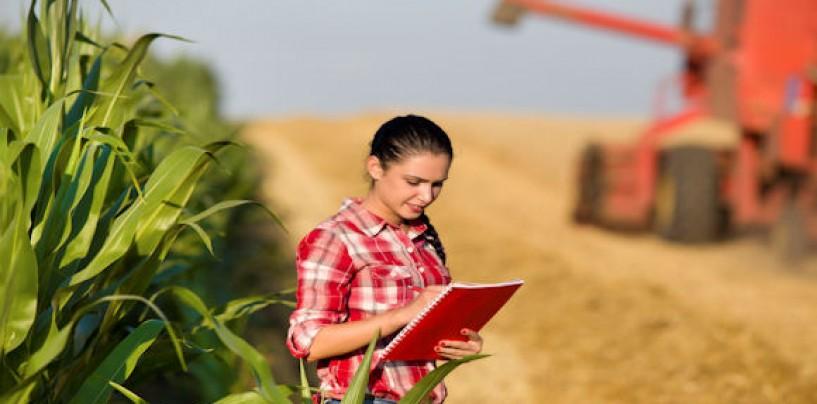 Tinerii care vor să înființeze ferme vor primi teren gratuit.Printre condiții se numără studiile în agronomie