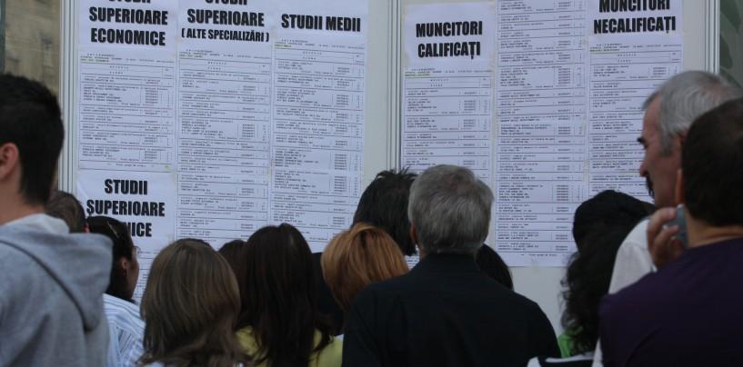 Peste 800 de locuri de muncă vacante în județul Cluj