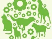 Sterilizări gratuite pentru câini