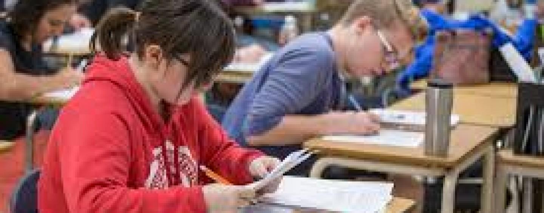 Guvernul va da burse de merit elevilor cu mețiuni la olimpiade