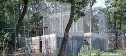 T9 propune o dezbatere publică pe tema Grădinii Zoologice. Presa locală e invitată să se implice