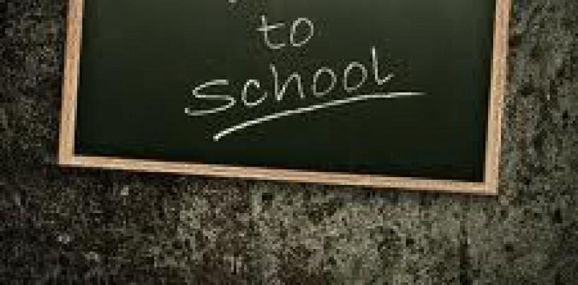 Elevii se întorc la şcoala. Iată structura anului şcolar