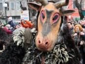 Consilierii din Câmpia Turzii la distracție pe banii publici, la Mohacs