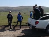 Legalitatea păşunatului verificată în Cheile Turzii