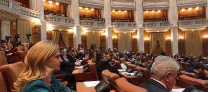 """După ce l-a numit pe Iohannis drept """"Președintele Delir"""", Cristina Burciu s-a afiliat la PNL"""