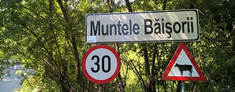 Peste 300 de indicatoare rutiere pe drumul Băișoara – Muntele Băişorii – staţiunea Muntele Băişorii