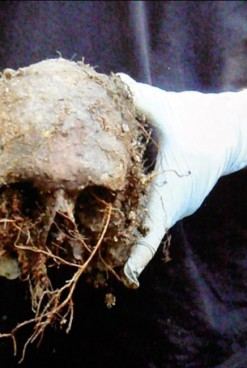 Numitorul Comun: Moartea. O expoziție despre represiunea comunistă din România