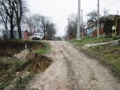 Hotărâri controversate privind fondul forestier. PNL va cere intervenția prefectului de Cluj
