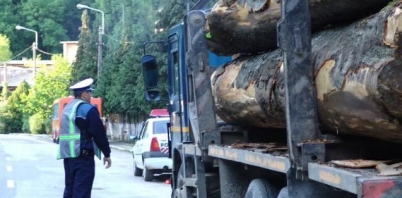 Cherestea confiscat� la Câmpia Turzii