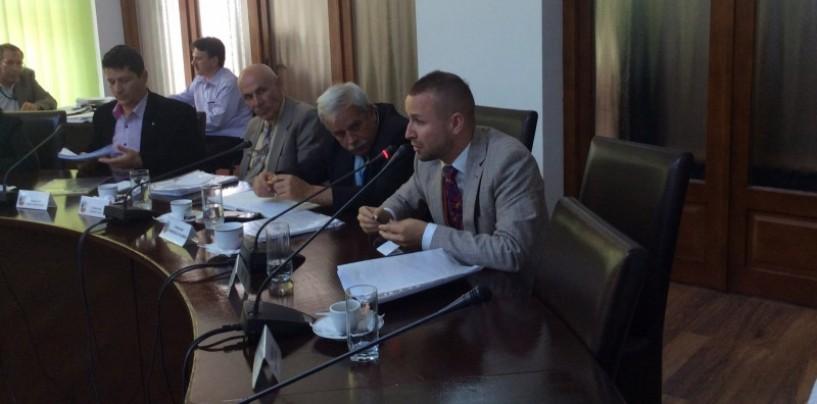 Alin S�l�gean, consilierul ce crede c� managementul cultural începe de la izmene