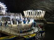 Turda ar putea beneficia  de un program de dezvoltare a turismului balenar