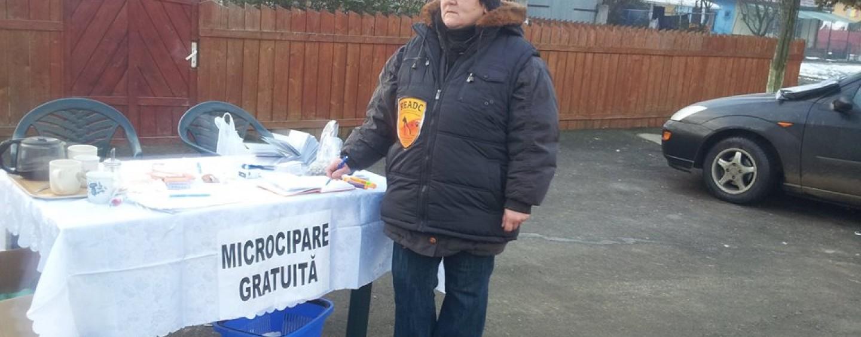 O asociație din Turda luptă în instanță pentru dreptul de a nu cipa abuziv cățeii