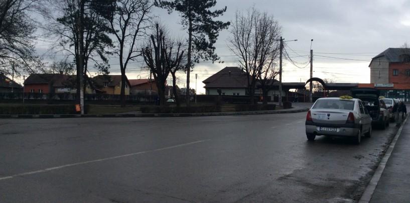 Municipalitatea va reface zonele verzi cu acces spre șoseaua principală