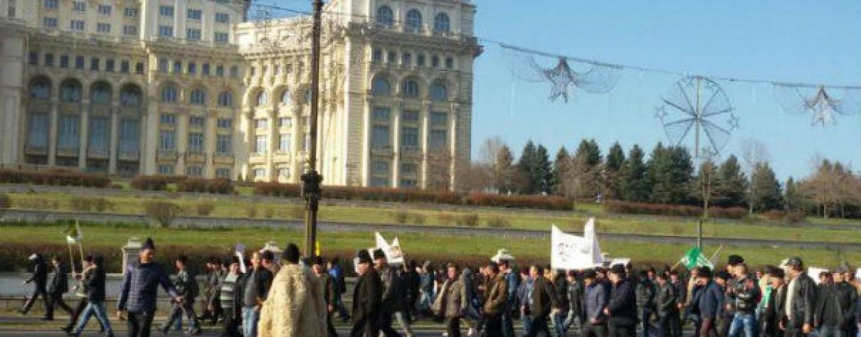 Sute de fermieri din Cluj la protestele din capitală