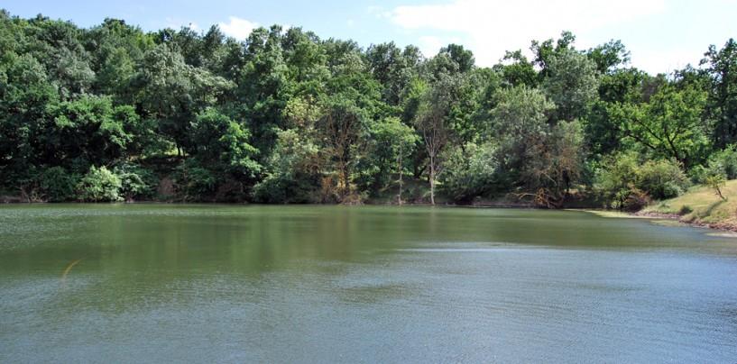 Primăria vrea să schimbe ilegal destinația unui teren lângă Lacul Tarzan