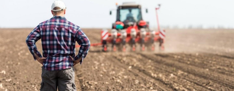 Fermierii clujeni lipsesc din topul subvențiilor în agricultură