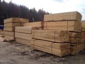 Lemn confiscat în județul Cluj. Garda forestieră în control