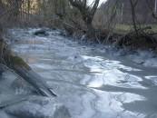Dezastru ecologic pe Arieș. Locuitorii din Câmpia Turzii avertizați să nu folosească apa  râului