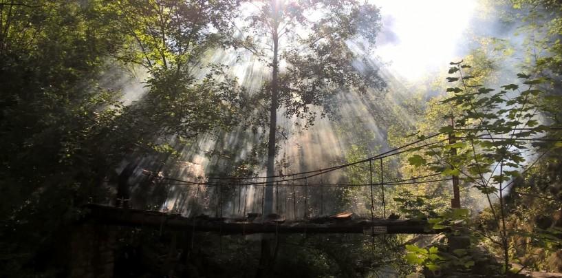 Măsuri pentru refacerea podului numărul 3 din Rezervația Naturală Cheile Turzii
