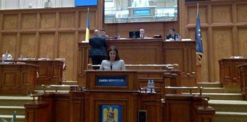 Cristina Burciu preocupată de violența domestică, după ce consilierii PSD au desființat adăpostul protejat