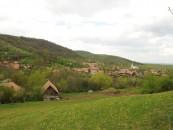 Ecologizare la Borzești. Promovează România Curată – Începe din satul tău