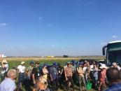 Solurile din Transilvania, printre solurile cu cel mai mare potențial agricol din Europa