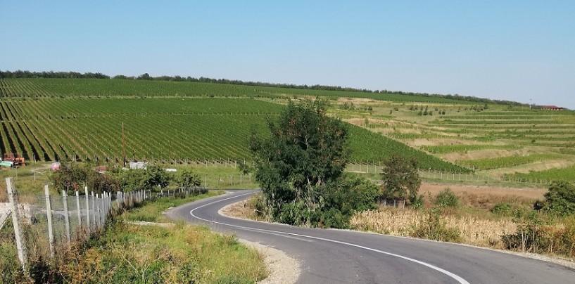 Marcaje rutiere pe drumul Turda-Ploscoș
