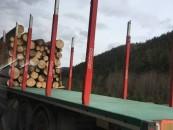 Pădurea Turzii înstrăinată cu încălcarea Codului Silvic. Se crează un posibil mecanism de sifonare a banilor