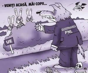 Mesaje anti-PNL difuzate de turdeni după zvonul că fostul lider PSD al Turzii trece la PNL