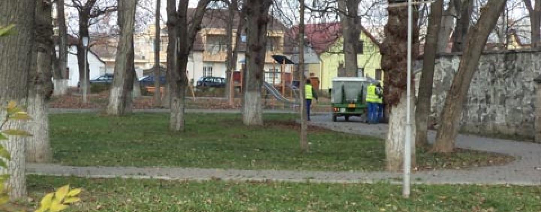 """Locuitorii din Turda Nouă se plâng că municipalitatea nu amenajează parcul. """"Îl așteptăm pe primar cu nepotul, la plimbare"""""""