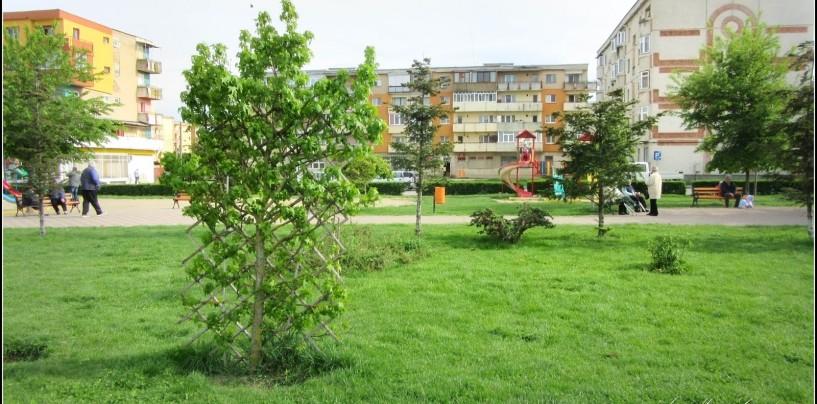 Reclamații privind zgomotele din Parcul Teilor. Autoritățile nu gestionează bine problema