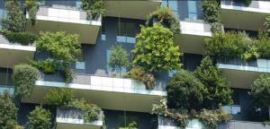 Orașele verzi ale Europei. Arhitecții propun zone verzi nu doar pe străzi. La Turda până și parcările și străzile sunt proiectat doar cu asfalt